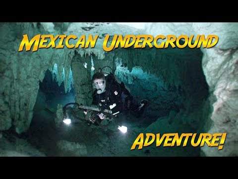 Diving Mexico's Cenotes | JONATHAN BIRD'S BLUE WORLD