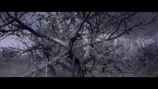 Battle For Sevastopol Trailer