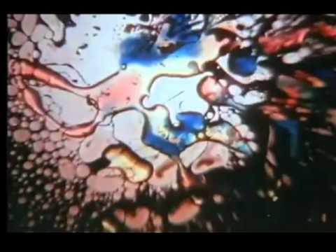 Jefferson Airplane - Fat Angel