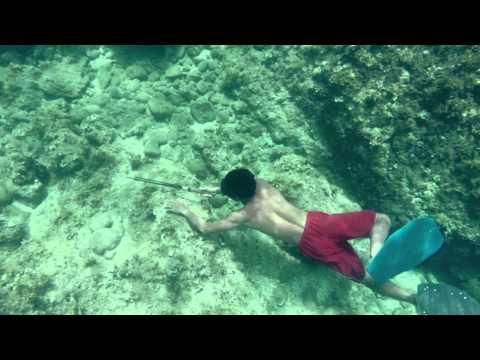 คนเบิกทาง : 'ชนเผ่าซามา' มนุษย์ที่ดำน้ำตัวเปล่าได้นานที่สุดในโลก  8 ก.ย. 57  (2/4)