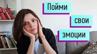Recognizing emotions: anger, sadness, shame/guilt, fear, disgust, joy, love, interest.