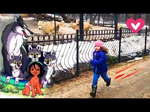 , title : 'Ржу не могу, ржомба. Приколы с детьми в зоопарке с волками. Тест на психику. 0+'