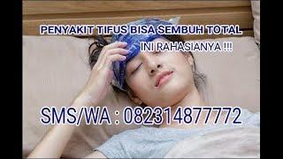 Obat Tifus Atau Tipes Herbal Ampuh De Nature