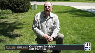 Outdoors Insider with Mark Kepler