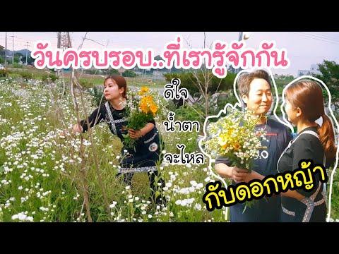 วันครบรอบที่เรารู้จักกัน/EP.137/โอปป้าร้องไห้ได้ไหม?😅/มันคือดอกหญ้าในความทรงจำ/สะใภ้เกาหลี by Korea