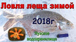 Рыболовные базы на яузском водохранилище зимой