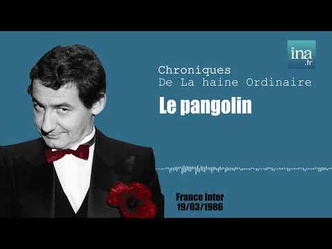 Vidéo de Pierre Desproges