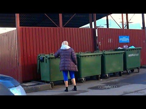 Не заключал договор, нет квитанций, не прописан: отвечаю на главные вопросы о плате за вывоз мусора