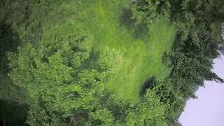 Drone / fpv / freestyle / gopro session5 / 은행나무숲 / 하수의 움찔움찔비행 ^^;;