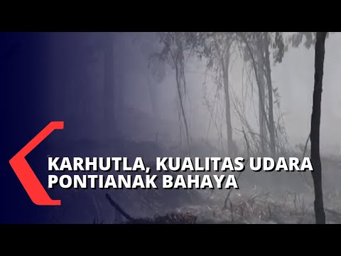 Kebakaran Lahan, Kualitas Udara di Pontianak Berbahaya