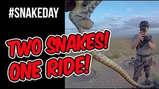 It was World Snake Day.  We were in the desert watching the sun set over a sea of rocks and a pastel sky.  Then we find not only one, but TWO snakes on this ride!  And I got to experience all this with one of my sons.  It doesn't get any better than that.