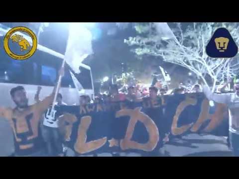 """""""caravana REBEL + REBEL CHIAPAS"""" Barra: La Rebel • Club: Pumas"""