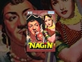 Nagin (1954){HD} - Vyjayanthimala - Pradeep Kumar - Jeevan - Classic Movies - (With Eng Subtitles)