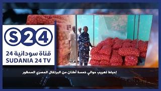 إحباط تهريب حوالي 5 طن من البرتقال المصري المحظور -  أخبار البلد - حال البلد