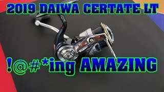 Daiwa certate 19