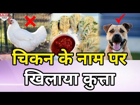 Dog meat momos - смотреть онлайн на Hah Life