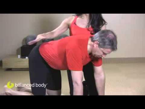 תרגיל לתנועתיות עמוד השדרה- Cat