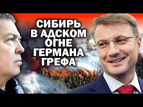 Лесные пожары в Сибири: кто стоит за преступлением века / #ЗАУГЛОМ #СИБИРЬ #ТАЙГА #ПОЖАР #МЧС #ИЛ76