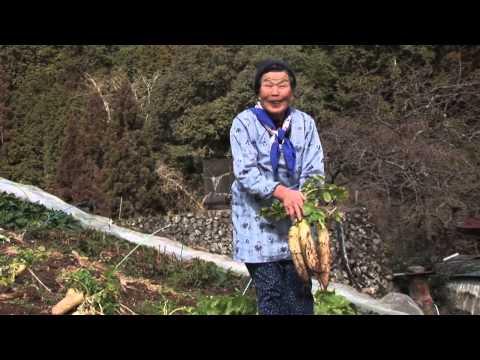 美しき日本 奈良 十津川村 神納川