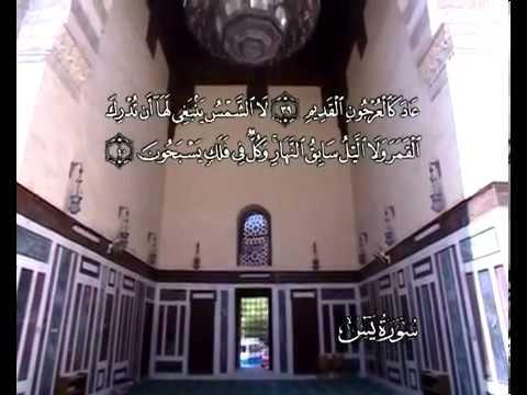 Sourate Ya Sin<br>(Ya Sin) - Cheik / Ali El hudhaify -