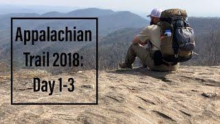 Appalachian Trail 2018: Days 1-3, Springer Mountain to Neels Gap