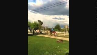 Video del alojamiento Casa SPA Hijos Dalgo