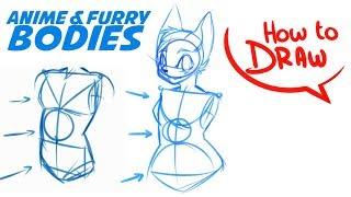 How To Draw Anime & Furry Bodies
