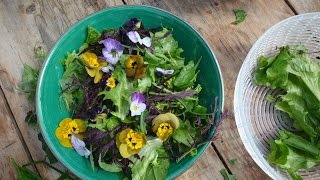 Making Simple Organic Salad With Edible Flowers