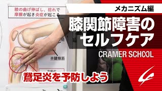 膝関節障害のセルフケア3 メカニズム編