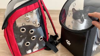 Uni and Nami are going to the vet with new cat carriers