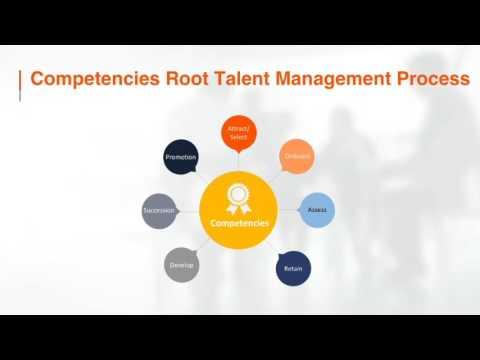 Fundamentals of Strategic Talent Management - Interactive Services ...