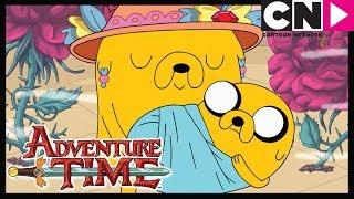 Время приключений   Сфера   Cartoon Network