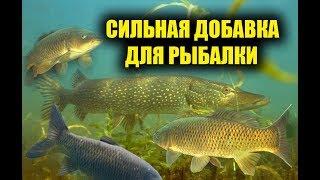 Аминокислот для ловли рыбы