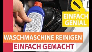 Waschmaschine reinigen - Komplette Waschmaschine mit Schublade & Türdichtung sauber machen