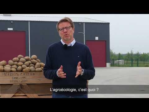 La MAISON CANLER  promeut l'agro-écologie sur l'ensemble de la filière pommes de terre