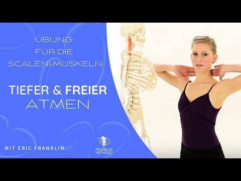 Die Öbungen bei der Osteochondrose des Brustteiles und schejnogo der Abteilung