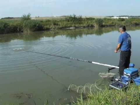 La pesca su wobblers un forum