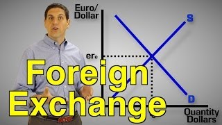 Foreign Exchange Practice- Macro Topic 6.4 and 6.5
