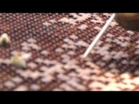 Come rendere il metallo martello toro