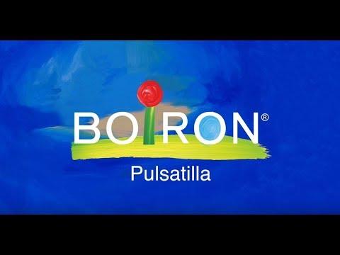 Boiron, Single Remedies, Pulsatilla, 30C, Approx 80 Pellets