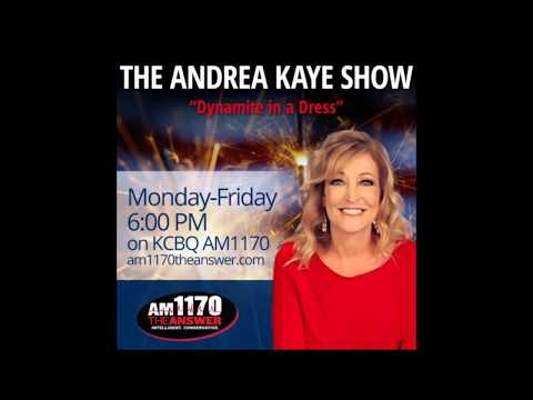 Steve Miller, President/Founder of getdismissed.com, featured on AM 1170 The Answer on The Andrea Kaye Show – January 11, 2018