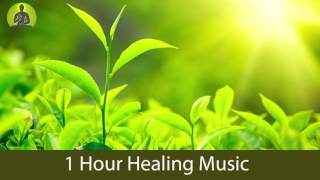 1 Hour Deep Healing Music for The Body & Soul - Relaxing Music, Meditation Music, Soothing Music