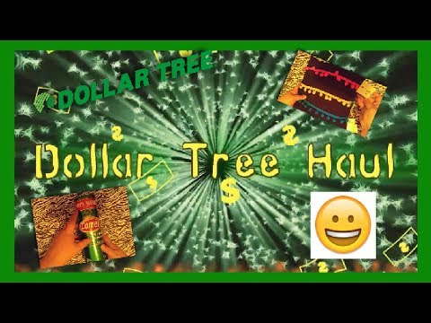 Dollar Tree Hau| l 8/6/19