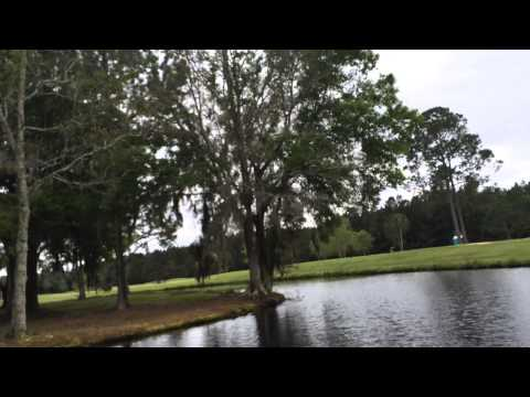 Bass Fishing at a diffrent pond at a golf course [ Booyah Buzz Bait]