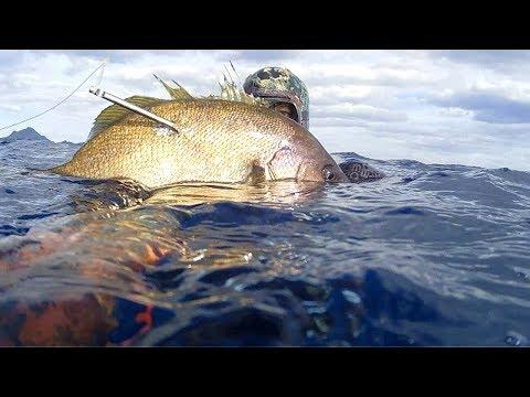 La pesca nella regione di mare di una fotografia