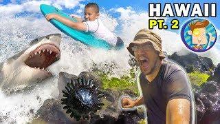 Mike Gets Stuck in Hawaii! Shark Fears & Weird Sea Creature (FUNnel Vision  Maui Trip Part 2)
