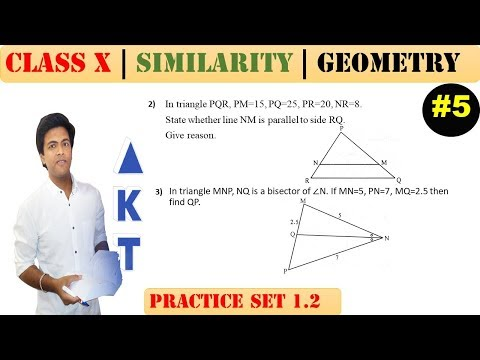 Similarity [Part 5] | Class 10 | Practice set 1.2 (MATHS 2) | Mah. (SSC) Board | Q2 and Q3