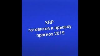 XRP прогноз 2019 от суперкомпьютера! Рипл готовится к прыжку!