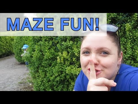 Maze Fun At Leahy's Farm - Entirely Amber