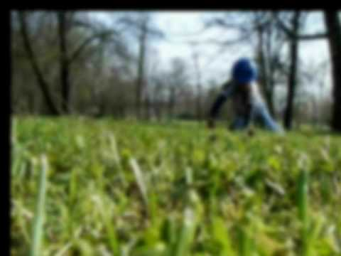Apart Man - TraumaTeam - Girl In The Park